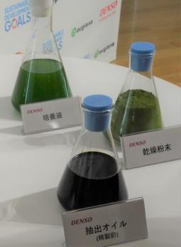 デンソーが手掛けるコッコミクサKJの培養液、乾燥粉末、抽出油脂