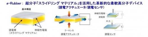 図2:誘電アクチュエーター・センサーの基本構造