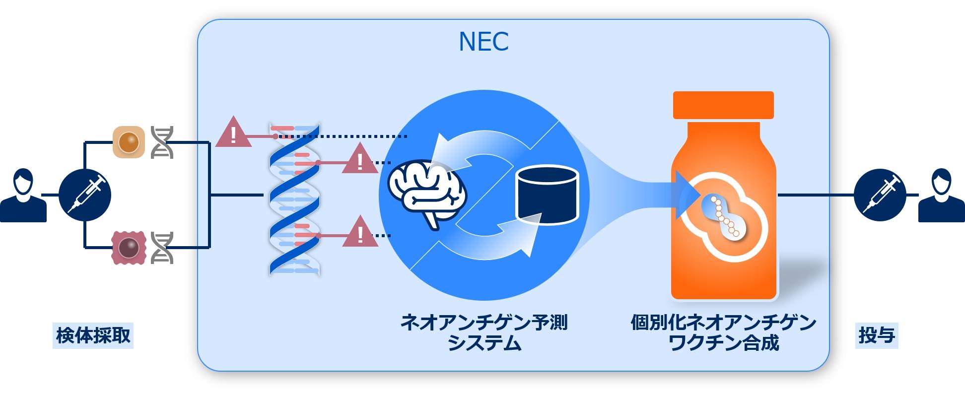 AI技術を活用した個別化ネオアンチゲンワクチン (出所:NEC)