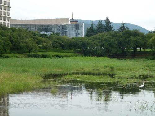 別の角度から見たHICO。近くの湖畔が大きな公園として整備されており、水鳥を眺めながらのんびり散策を楽しめる。