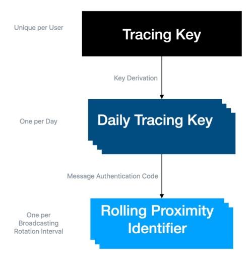 変化するブロードキャストID(RPI)はDaily Tracing Key(DTK)から生成される