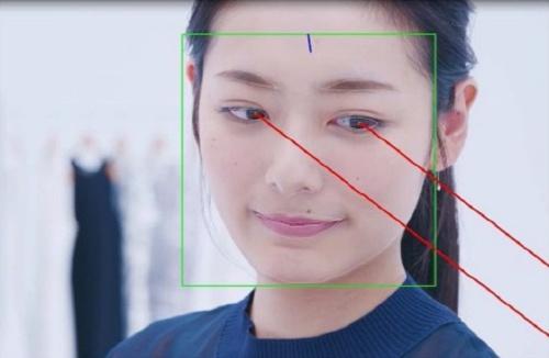目の周辺の特徴点を高精度に検出して、視線の方向を推定できる