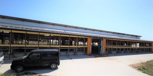 太陽光発電パネルを設置した牛舎