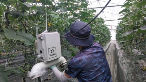 内気象ノード(中央の白い箱)で取得したデータに基づきハウス内の環境を制御する