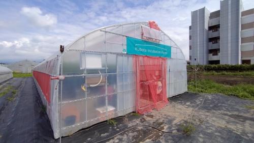 クボタなど6社による共同実証が始まった、群馬県内の農業用ハウス