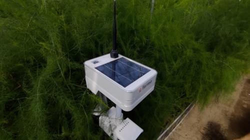 気温や湿度、日照、二酸化炭素の濃度など、ハウス内の環境を測るセンサー