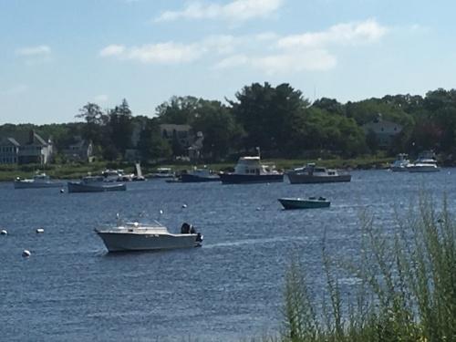 河辺に並ぶ住宅と個人用桟橋