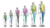 図3 年齢の変化に基づいたTHUMSの「バージョン4」の歩行者モデルと乗員モデル