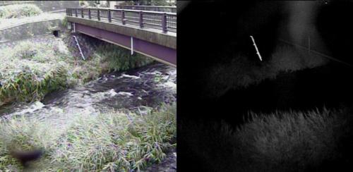 河川の護岸に取り付けた反射シートは、夜間に撮影した画像(右)でもくっきりと浮かび上がる(写真:国土交通省沼津河川国道事務所)
