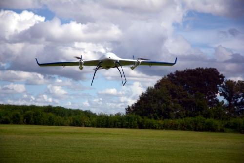 エアロボウイングが垂直離陸している状態(写真:日経クロステック)