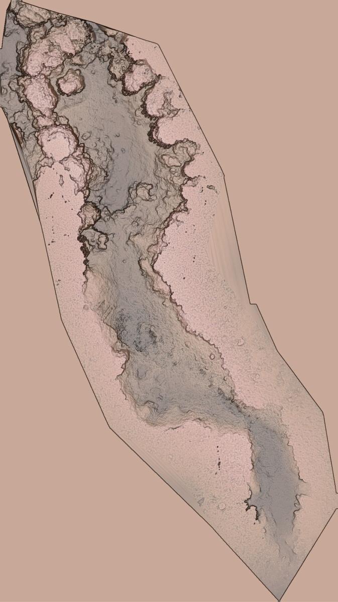 グリーンレーザースキャナーを搭載したドローンで計測したサンゴ礁の地形。高さの平均誤差が±2cmの高精度な3次元データを取得した(資料:海上・港湾・航空技術研究所 港湾空港技術研究所)