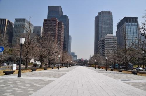 行幸通りの皇居外苑区間から駅方向を望む。周辺の高層ビルには戦前から東京駅周辺に居を構えていた大手企業などが入居する(写真:大井 智子)