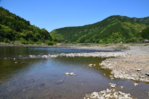 かつてのダム湖とは思えない自然の河川の風景が広がっていた(写真:大井 智子)
