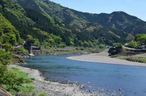 下流側からみた荒瀬ダム跡。写真左側の右岸側に流れの中心となるみお筋が既に形成されていた。川がカーブする内側の左岸側には砂州が広がっていた(写真:大井 智子)