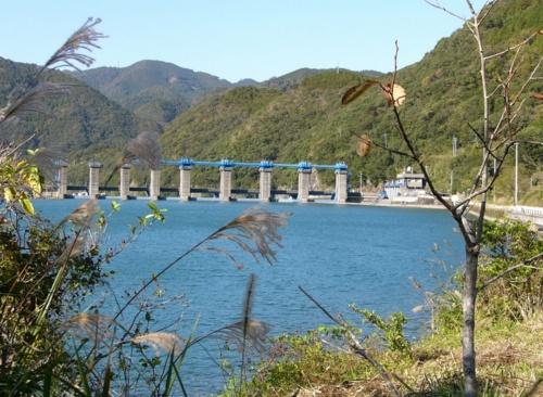 撤去前の荒瀬ダム。河川法によるダムの定義は堤高15m以上を指し、15m未満の構造物は堰と呼ばれる。荒瀬ダムの堤高は25m、堤頂長は210.8m。本格的なコンクリートダムの撤去は国内で初めてとなった(写真:森下 政孝)