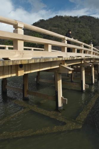 水中梁の上に木橋を載せたハイブリッド構造の擬宝珠橋。水中梁の姿がうっすら見える。レンズにフィルターを付けて撮影した(写真:生田 将人)