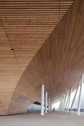 半屋外の2階コンコース。打ち水による蒸散作用で冷却効果を発揮しやすくなるよう、木チップ舗装を採用している(写真:吉田 誠)