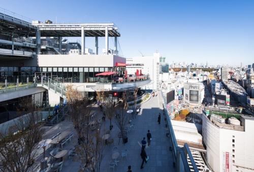 渋谷フクラスの17階にあるルーフトップガーデン「SHIBU NIWA(シブニワ)」。スクランブル交差点を見下ろせるだけでなく、富士山や関東周辺の山々まで望める。アジア各地で人気のエンターテインメントレストラン「CÉ LA VI(セラヴィ)」が日本に初上陸。17、18階のカフェ&バーやダイニングを運営(写真:浅田 美浩)