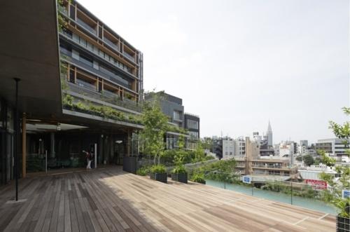 南敷地側の建物3階のテラスから、北側敷地を見る(写真:安川 千秋)
