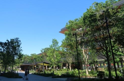 街区の中央に位置する約1万m<sup>2</sup>の広場には、樹木や草花が数多く植えられている(写真:日経クロステック)