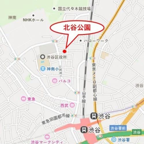 北谷公園の位置。渋谷公園通りを上った右手に隠れるようにある(資料:東急、CRAZY AD、日建設計)