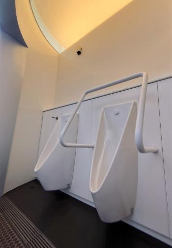 男子トイレの小便エリアには扉がない。建物の後ろに曲面の壁を設け、そこに手洗いを設置している(写真:日経クロステック)