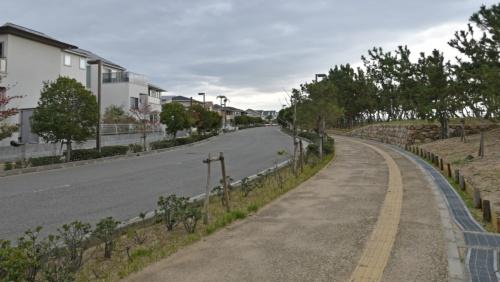 南芦屋浜の南側に立ち並ぶ戸建て住宅。写真右の緑地の向こうは大阪湾だ(写真:日経コンストラクション)
