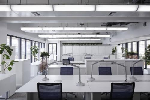 シーリングフリーを設けた事務室(写真:ダイダン)