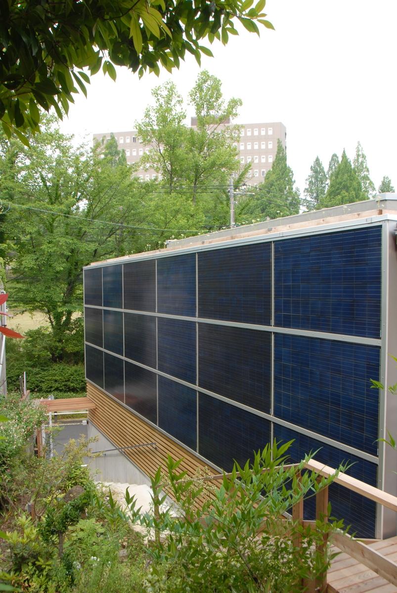 光透過性を持つ「DUOMAX(多結晶)」を用いたBIPVの実例。屋上緑化のために太陽光発電パネルを屋上に設置することが難しく、開口部にガラス代わりに採用した。突き付け目地はシリコン系シーリング材を充填、天地はアルミフレームで固定(資料:トリナ・ソーラー・ジャパン)