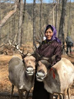 図1 トナカイで2週間ごとに移動するモンゴルの遊牧民(出所:what3words)