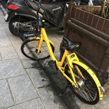 ofoの自転車。パリ市街の歩道に、こんな具合に無造作に置かれている。かのシャンゼリゼ通りにも何台か置かれていた