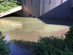 左は東日本台風の影響で浸水した川崎市市民ミュージアムの地下1階にある駐車場入り口、右は荷解き梱包室の排水後の様子。荷解き梱包室は、地下駐車場との間に設けられたシャッターが水圧で破壊された後に浸水し、床から3m超まで水に漬かった(写真:川崎市)