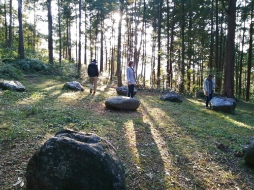 20年11月のトライアルツアーの対象になった徳島県「神山」の風景(資料:LOCAL DIVER)