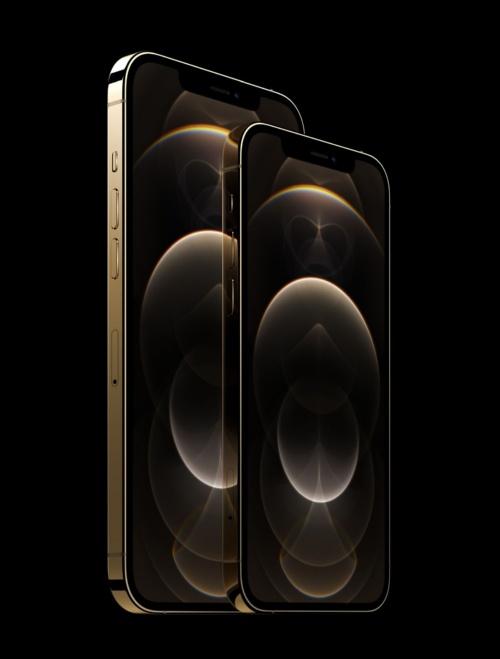 左が「iPhone 12 Pro Max」、右が「iPhone 12 Pro」
