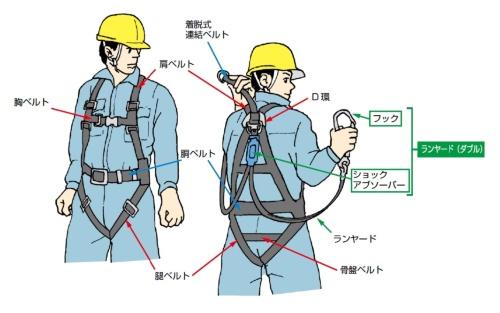 フルハーネス型の墜落抑止用器具のイメージ(出所:厚生労働省)