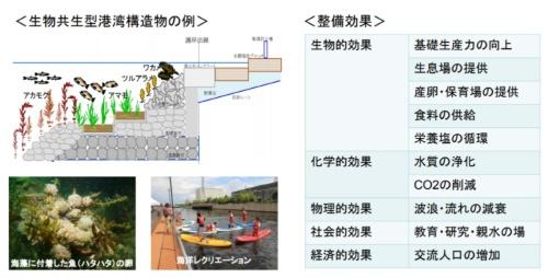 生物共生型港湾構造物の例とその整備効果(資料:国土交通省)