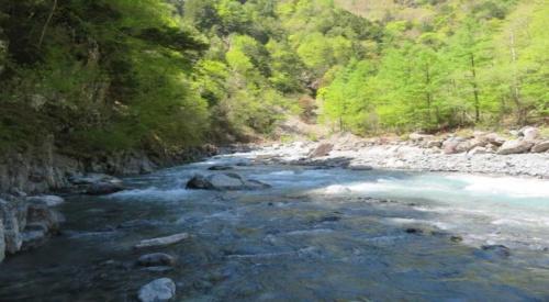 静岡県内を流れる大井川上流の西俣川。大井川水系の流量減少などを巡り、静岡県とJR東海は対立している(写真:静岡県)