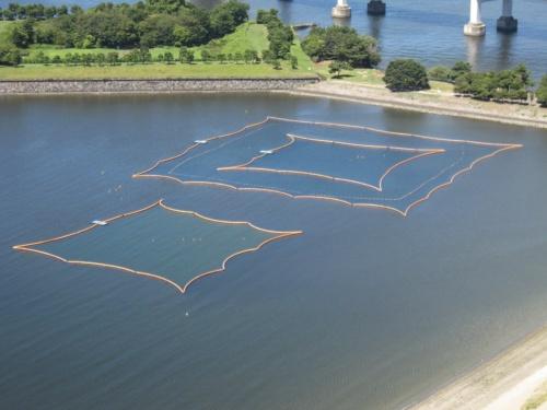 東京都と東京2020組織委員会が2018年に実施したお台場海浜公園の水中スクリーン。3重に設置したスクリーン内の水質は大会の基準を満たし、大腸菌類の抑制効果が確認できたという(写真:東京都)