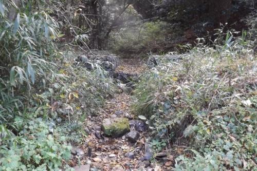地蔵谷の沢枯れの様子。19年11月26日撮影(写真:ウエットランド中池見)