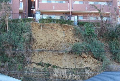 土砂が崩落した斜面の表層部分。国土交通省の調査では「基岩部の凝灰岩が風化しており、深さ1mほどまで崩れていた」。2月6日撮影(写真:日経クロステック)