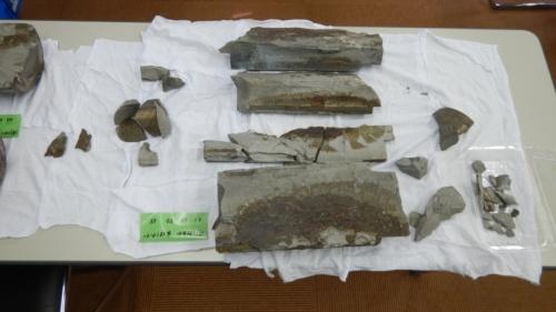 舞鶴クレインブリッジ西側主塔のピポットローラー支承で破損していたローラー(写真:舞鶴市)