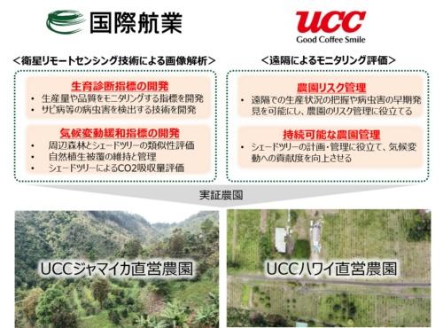 規模が異なる2つのUCC上島珈琲の直営農園で行うプロジェクトの概要(資料:国際航業)