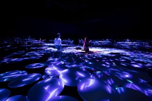 「The Way of the Sea through the Memory of Topography - Colors of Life」。新作である上記『地形の記憶』の空間にたたずんでいる間に、過去の別作品『The Way of the Sea, そして超越する空間』の魚の群れが入ってきた。魚がいなくなると作品は終わる(写真:西田 香織)