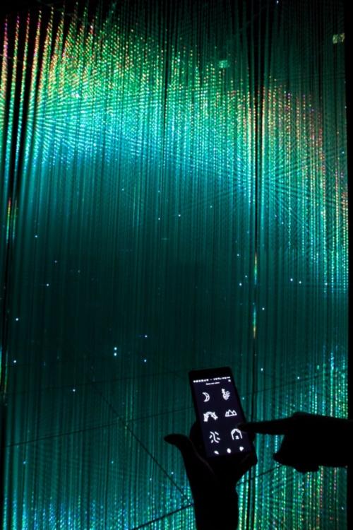『Wander through the Crystal World』。チームラボのエキシビジョンアプリをスマーフォンにダウンロードすると、その操作によって参加できる作品。LEDを吊り下げてつくった3Dのインスタレーション空間に、手元で選んだ作品が現れる(写真:西田 香織)
