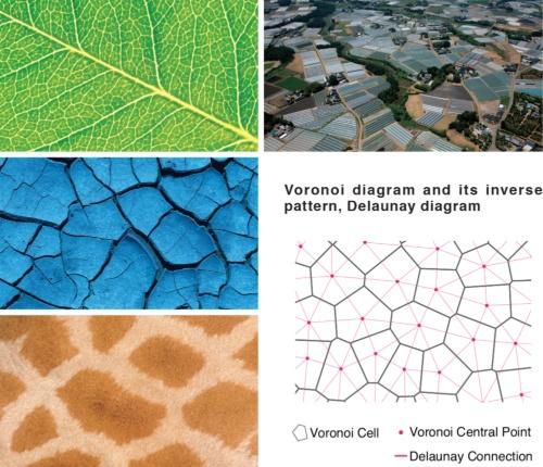 ヴォロノイとは、「ランダムに散らばる複数の点があるときに、それぞれの点からの等距離を通る線(垂直二等分線)を引く」という単純な原理によって、点ごとの領域を求める作図手法。自然界にも存在する反復的な幾何学パターンとして知られる(資料:経済産業省)