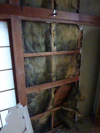 今回調査した築44年になる東京都内の住宅の内装材を剥がした状態。黒い変色が断熱材全体に見られる(写真:ヒノキヤグループ)