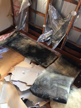 今回調査した築29年の埼玉県内の住宅。窓下に設置されていたポリエチレン袋入りグラスウールの屋外側が、黒く変色している(写真:ヒノキヤグループ)