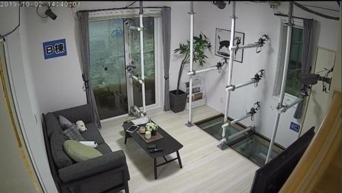 実験開始後、約1時間が経過した耐水害仕様住宅の室内。床上浸水はなかった(写真:一条工務店)