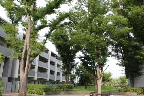 都市再生機構(UR)が建て替えた賃貸住宅「シャレール荻窪」。植物や自然環境を活用して居住空間の快適性を高めた(写真:日経 xTECH)