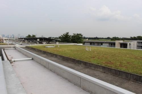 シャレール荻窪の屋上緑化の様子。URは1993年に屋上緑化の実験を開始し、薄層化技術を確立した(写真:日経 xTECH)